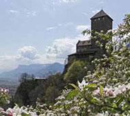Info Dorf Tirol